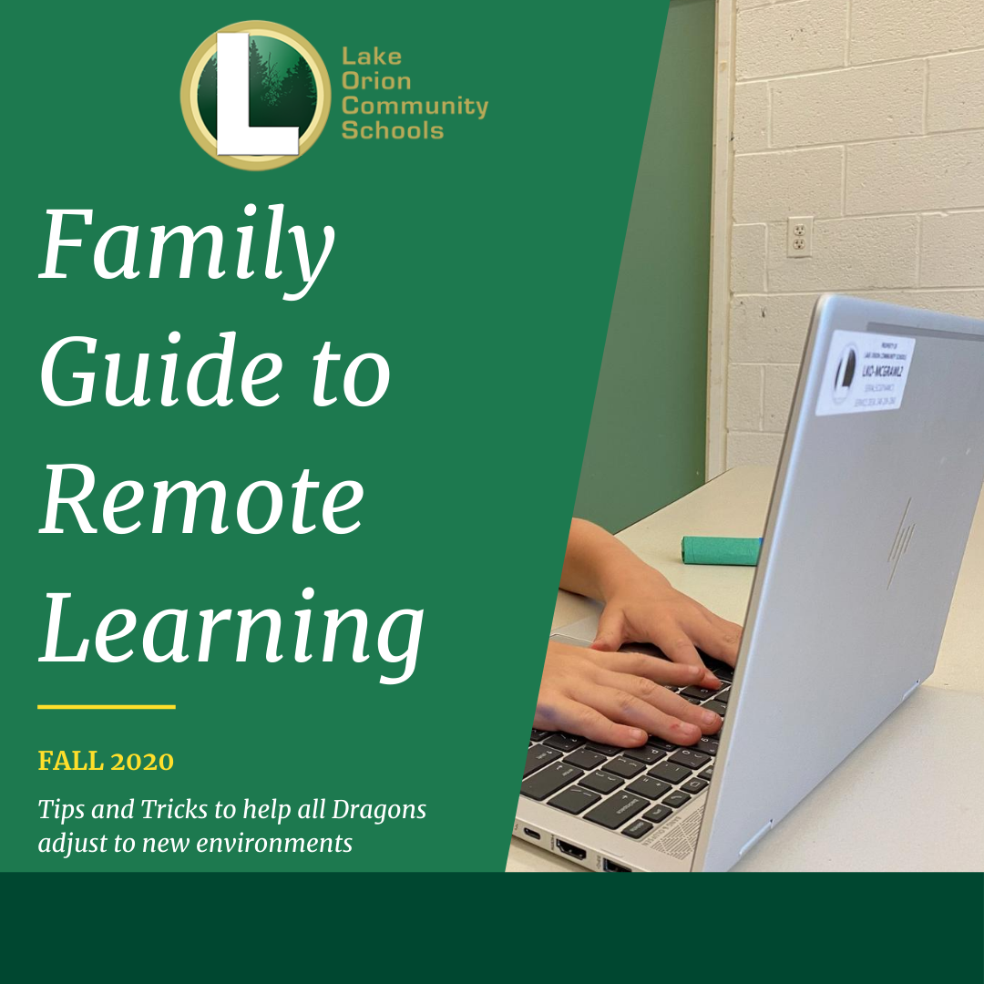 Family remote learning