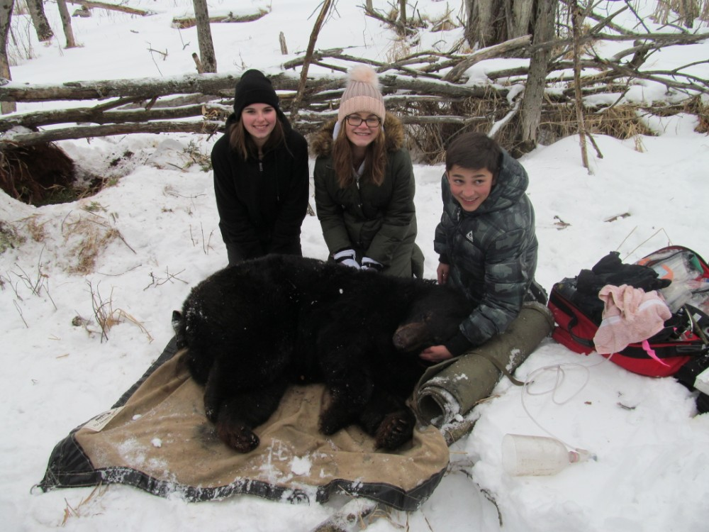 Waldon students assist in DNR bear den check